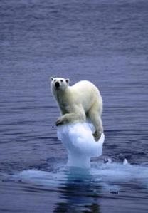 calentamiento-global_thumbnail