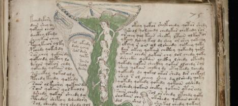 Detalle de una página del manuscrito Voynich