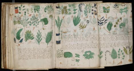 Páginas de la sección de 'farmacología' del manuscrito Voynich Leer más:  El misterioso libro escrito hace 600 años en una indescifrable lengua: nuevos datos - Noticias de Alma, Corazón, Vida  Páginas de la sección de 'farmacología' del manuscrito Voynich